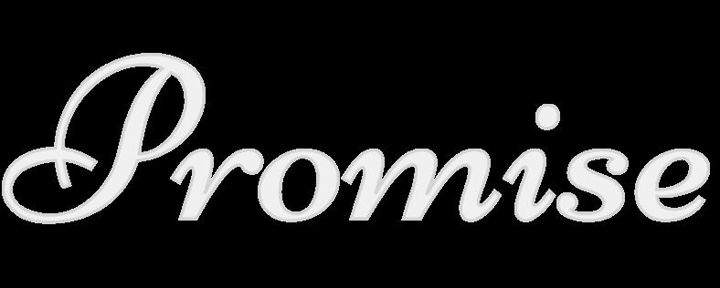 プロミス(約束)のアイコン